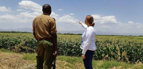 Ura WFP:llä — esittelyssä Mari Hassinen-Agoya