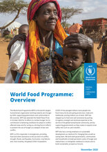 World Food Programme - Yleiskatsaus 2020