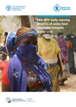 FAO-WFP Early Warning Analysis of Acute Food Insecurity Hotspots - Marraskuu 2020