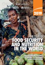 2019 - Ruokaturvallisuuden ja ravitsemuksen tila maailmassa (SOFI): Varautuminen taloudelliseen taantumaan ja laskusuhdanteeseen